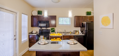 Interior Photo of Monon Place with Kitchen in Broad Ripple